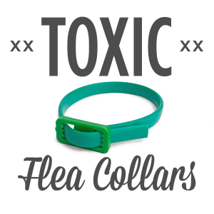 toxic flea collars
