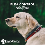 flea control side effects