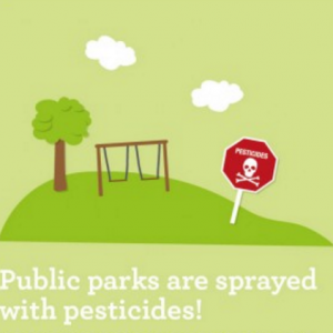 Pesticides Infographic