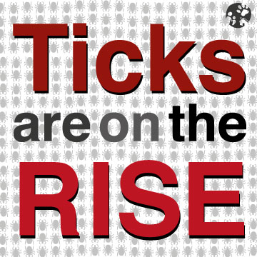 Ticks are on the Rise!