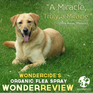 Wondercide Organic Flea Spray Truly a Miracle