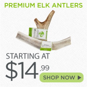 Shop Elk Antler Treats