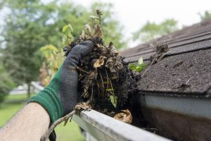 mosquito-proof_your_yard_clean_the_gutters