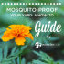 Mosquito-proof_your_yard_a_how-to_guide