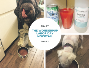 Labor Day Puppy Mocktail